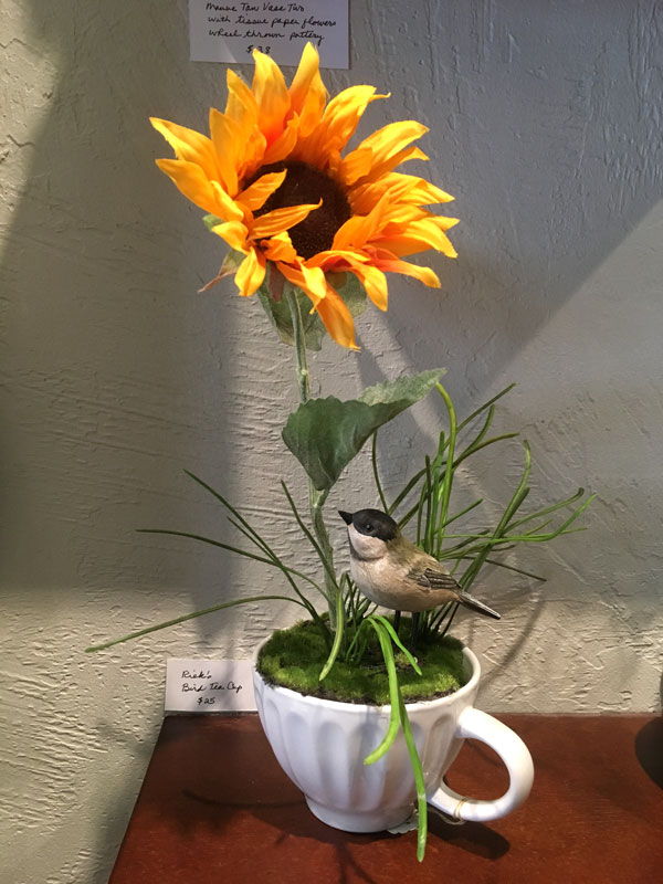 sunflower growing in a tea cup