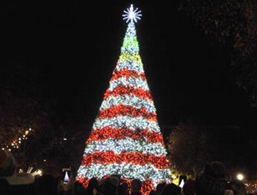 Johnstown Central Park Christmas Tree at Night