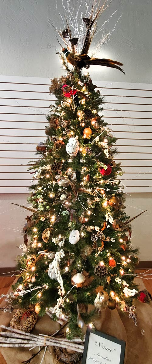Garden Club of Johnstown Holiday Tree
